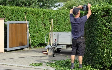 professional Dundee hedge cutting services