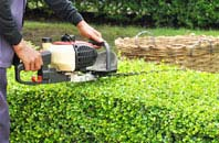 Dundee hedge trimming services